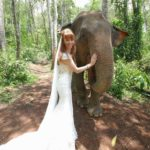 Tegan Marshall And The Wandering Wedding Dress In The Forest With An Elephant