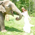 Tegan Marshall Feeding An Elephant In The Wandering Wedding Dress Thailand
