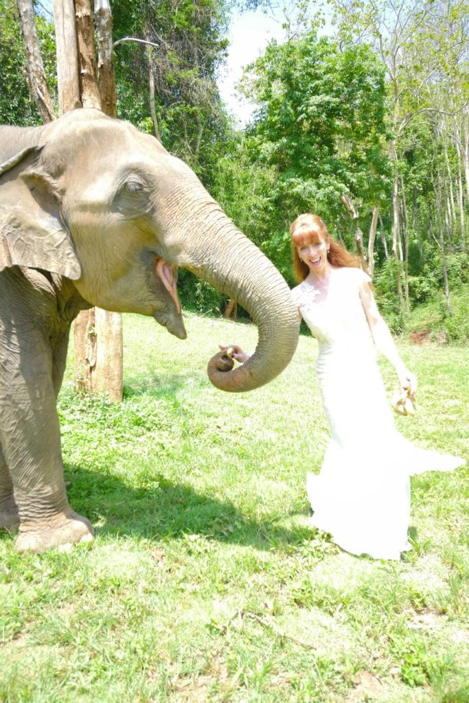 Tegan Marshall Feeding An Elephant In The Wandering Wedding Dress Thailand