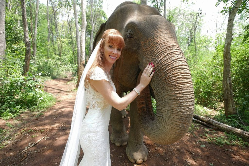 Tegan Marshall Up Close And Personal With An Elephant In The Wandering Wedding Dress