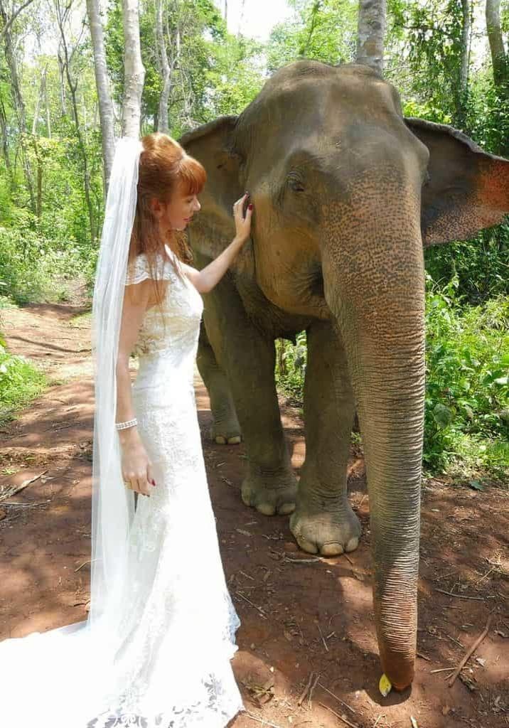 Wandering Wedding Dress In Chiang Mai With Elephants