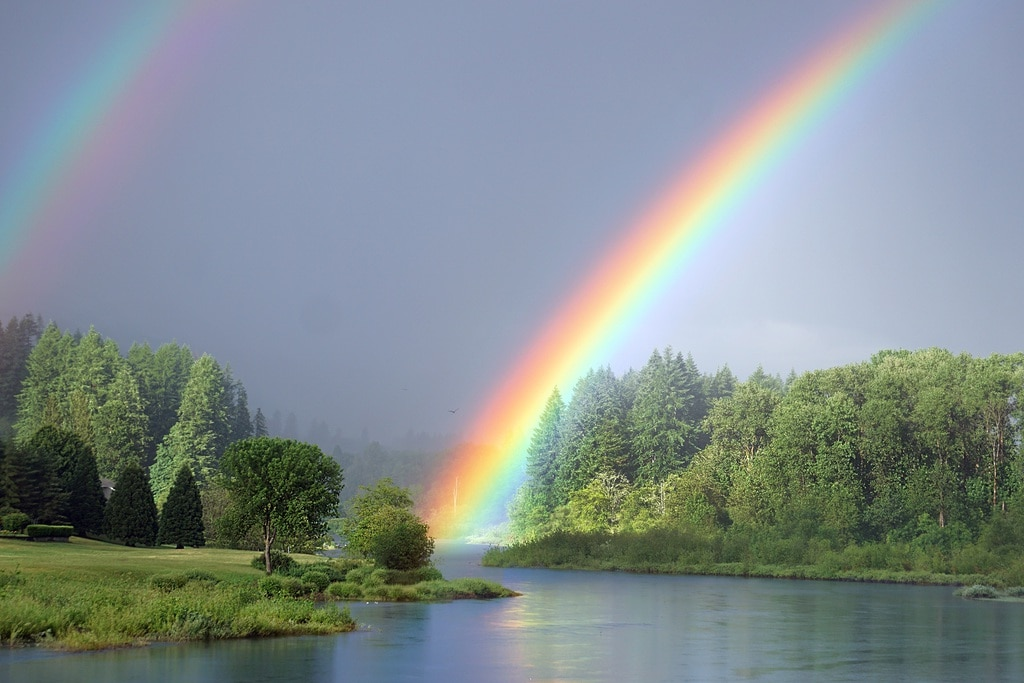 Focus On The Rainbow After The Storm To Stay Positive During Coronavirus Says Tegan Marshall 1