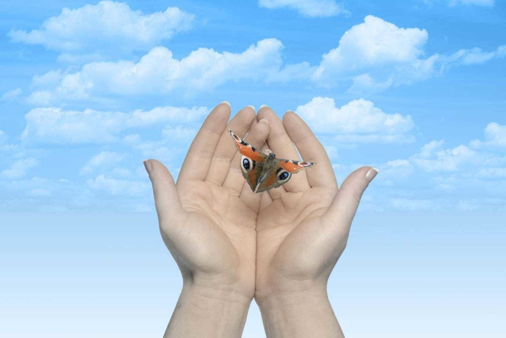 Tegan Marshall Blog Post On Business Habits For Success And How Letting Go Creates Success