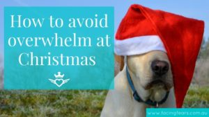 How to avoid overwhelm at Christmas - Facing Fears Blog